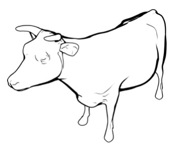 Line rendering of a cow